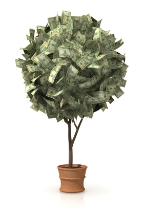 profits in potted trees