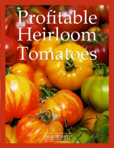profitableheirloomtomatoes-cover-opt