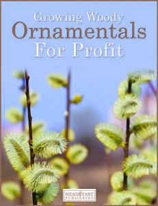 growing woody ornamentals for profit