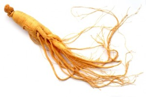 single ginseng root